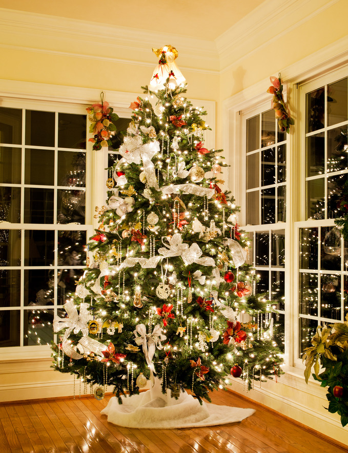 Tips for Professional Christmas Tree Lights