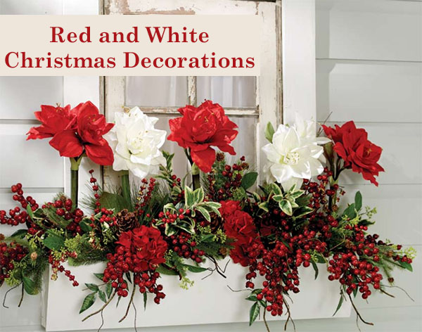 red and white amaryllis with red gooseberry sprays adorns a white window box for christmas - White Christmas Flower Decorations