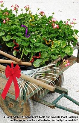 A Secret Garden Christmas